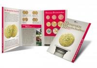 Holland Coin Fair-set 2010 Zilver