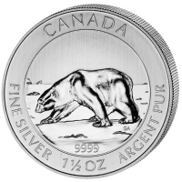 Canada Polar Bear 2013