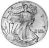 Amerika Silver Eagle 2013