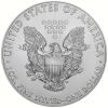 Amerika Silver Eagle 2019